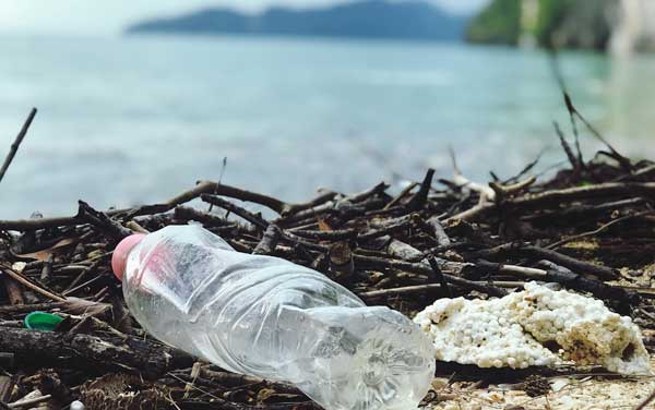sustainable reusable and responsible packaging- trends 2021
