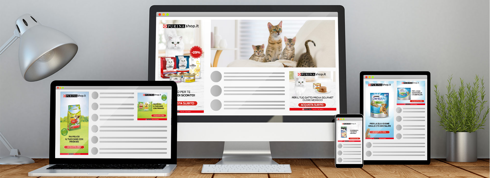 Dynamic Ads Google Display to promote Purinashop.it