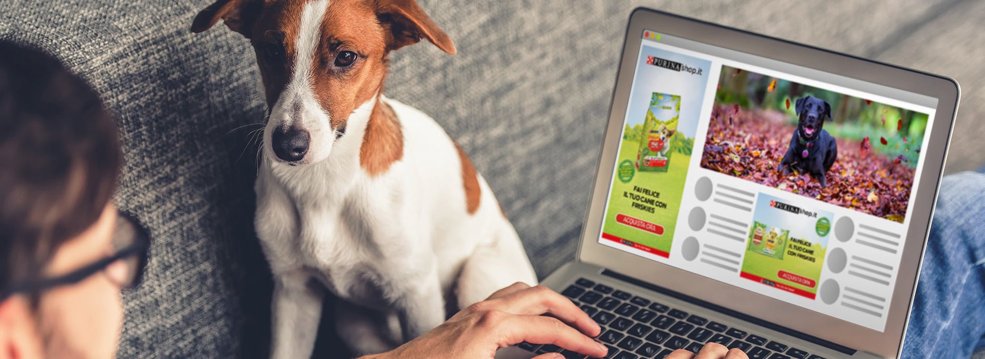 Creativity on animated banner ADW display for Purina